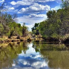 Thomas  Todd - Reflections of the Verde River