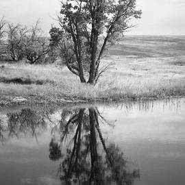 HW Kateley - Reflections on a prairie Pond
