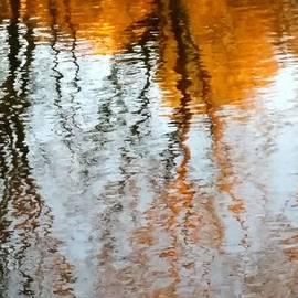 Bhavani Devi - Reflections V