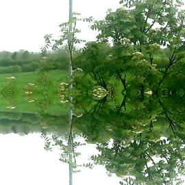 Julie Dunkley - Reflective Images