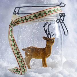 Christopher and Amanda Elwell - Reindeer Figure