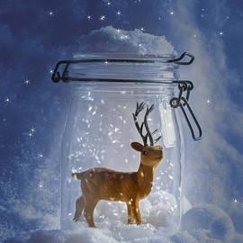 Christopher and Amanda Elwell - Reindeer Snowglobe