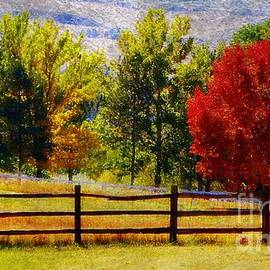 Bobbee Rickard - Reno in the Fall II