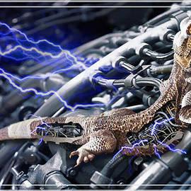 Joseph Juvenal - Reptile Dysfunction