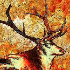 Jack Zulli - Resting Elk