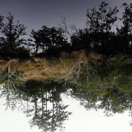 Richard Rosenshein - Reverse Reflection On A Crab Fishermans Canal