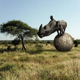 Randy Turnbow - Rhinoceros Bignogginus