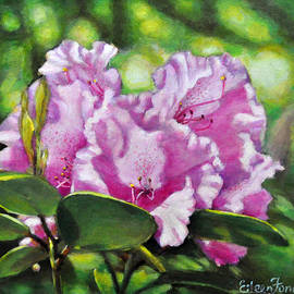 Eileen  Fong - Rhododendron in the Light