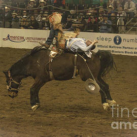 Janice Rae Pariza - Ride Em Cowboy Bronco Buck