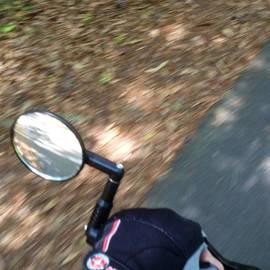 Terry Cobb - Riding Wild