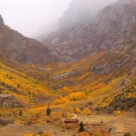 Jenessa Rahn - Fall Colors and Fog