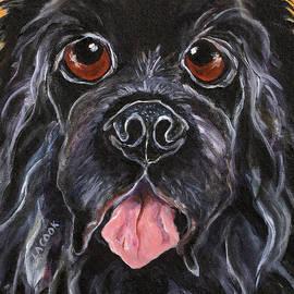 Lynda  Cook - Riki the Newfoundland Dog