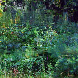 Ted Guhl - Ripples in a Woodland Pond