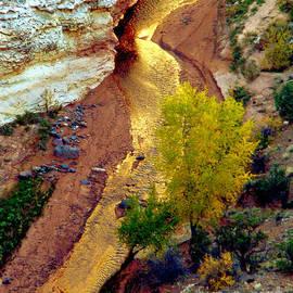 Eva Kato - River of Gold