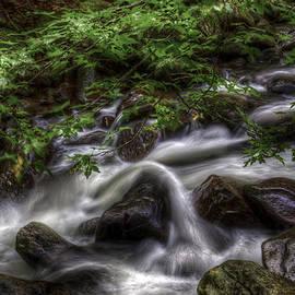 Harry B Brown - River On the Rocks II