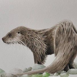 Giorgio  Smiroldo - River Otter