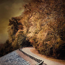 Jai Johnson - Riverside Drive in Autumn - Landscape