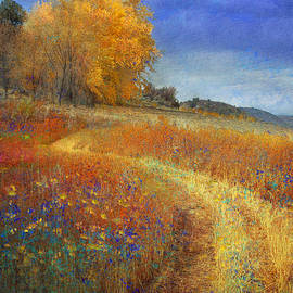 R christopher Vest - Road By The Lake With Flowers And Fall Colors