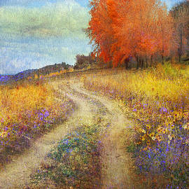 R christopher Vest - Road By The Lake With Flowers And Fall Colors2