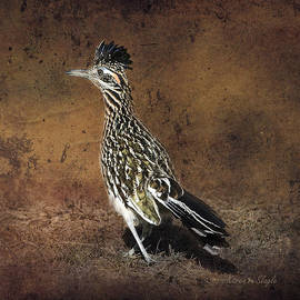 Karen Slagle - Road Runner 2