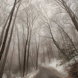 Karol  Livote - Road to Winter