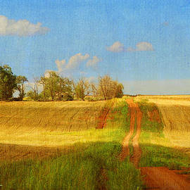 R christopher Vest - Road Up To Old House