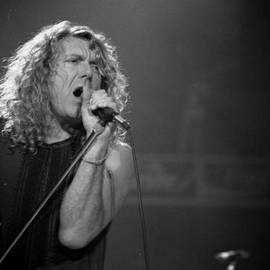 Timothy Bischoff - Robert Plant