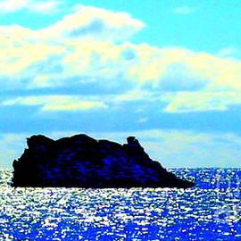Roberto Gagliardi - Rock in the Indian Ocean