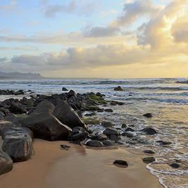 Jeff Stein - Rocky Kauai Coast
