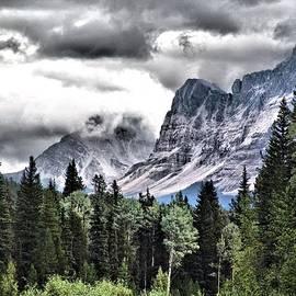 Janet Ashworth - Rocky Mountain Beauty