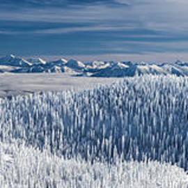 Aaron Aldrich - Rocky Mountain Winter