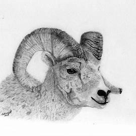 Wendy Brunell - Rocky Mt Bighorn