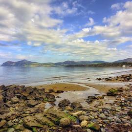Ian Mitchell - Rocky Peninsula