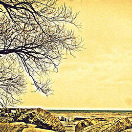 Kay Novy - Rocky Shoreline