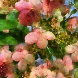 RC deWinter - Rococo Blossoms