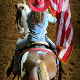 Stephen Stookey - Rodeo America - Land of the Free