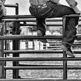 Priscilla Burgers - Rodeo Fence Sitters- Black and White