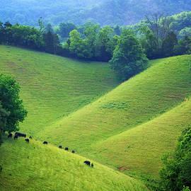 Carolyn Derstine - Rolling hills of Tennessee