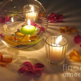 Alanna DPhoto - Romantic Setting