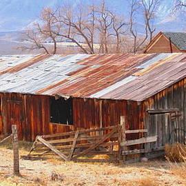 Marilyn Diaz - Room On The Ranch
