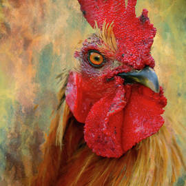 Georgiana Romanovna - Rooster On The Loose - Abstract Realism