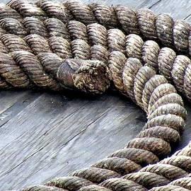 Janice Drew - Rope