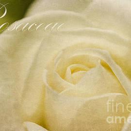 MaryJane Armstrong - Rosaceae Romantic Beauties