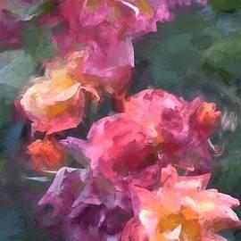 Pamela Cooper - Rose 317