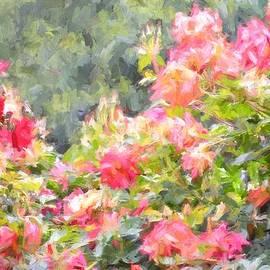 Pamela Cooper - Rose 324