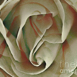 Ted Guhl - Rose Abstract