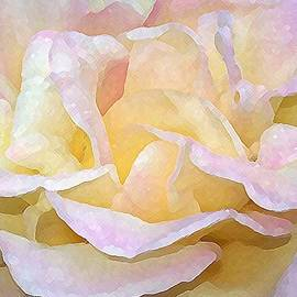 Michelle Rene Goodhew - Rose Bud