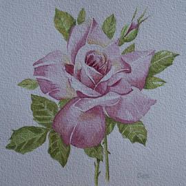 Carol De Bruyn - Rose