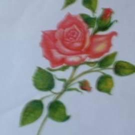 Regina Taormino - Rose Confection