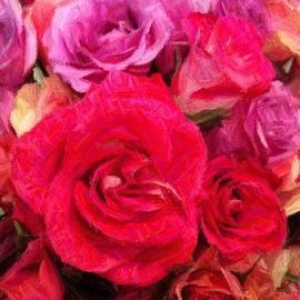 Marian Palucci - Rose Enhanced
